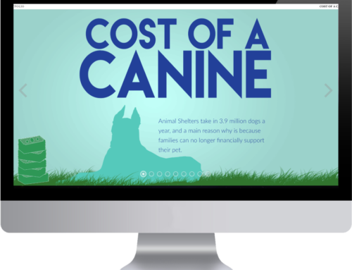 Cost of a Canine